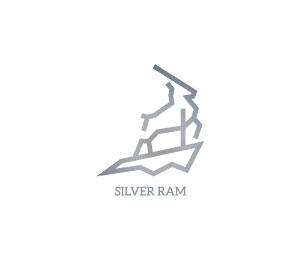 Silver Logo Design by Eclipse42