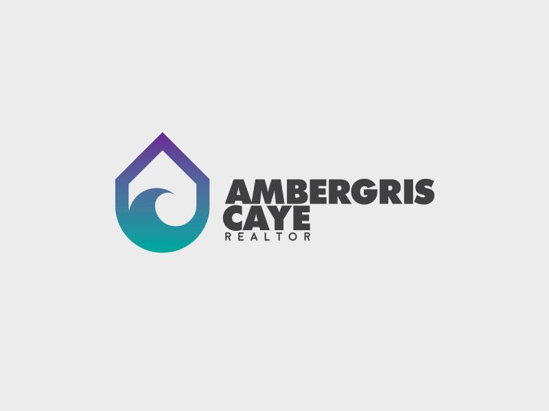Droplet Logo Design by Bakus