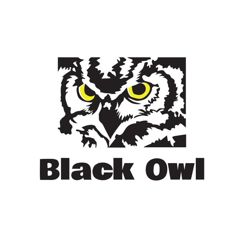 Black Owl Logo Design