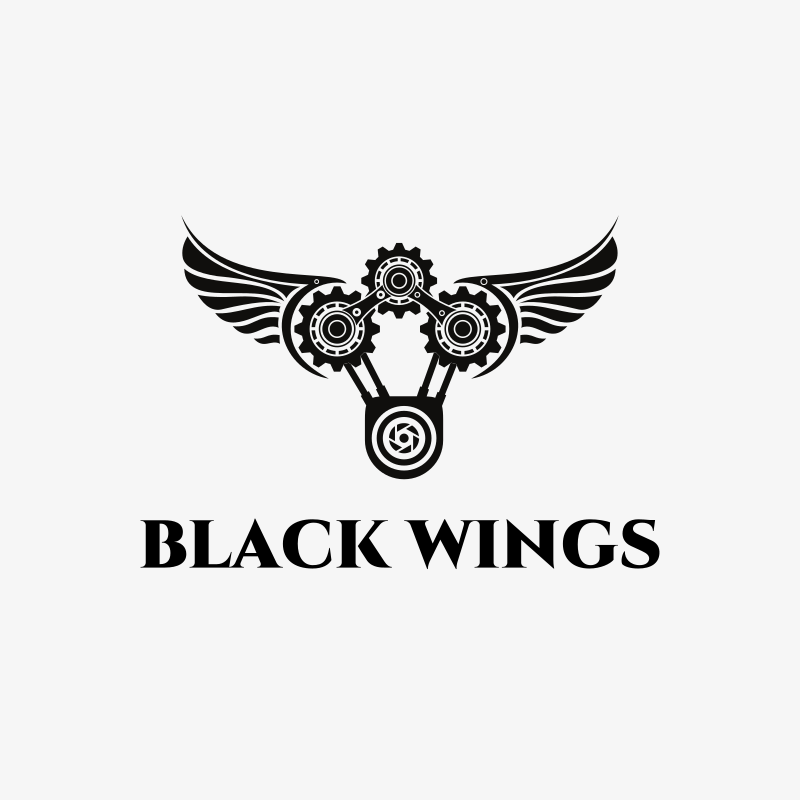 Black Wings Photography Logo Design