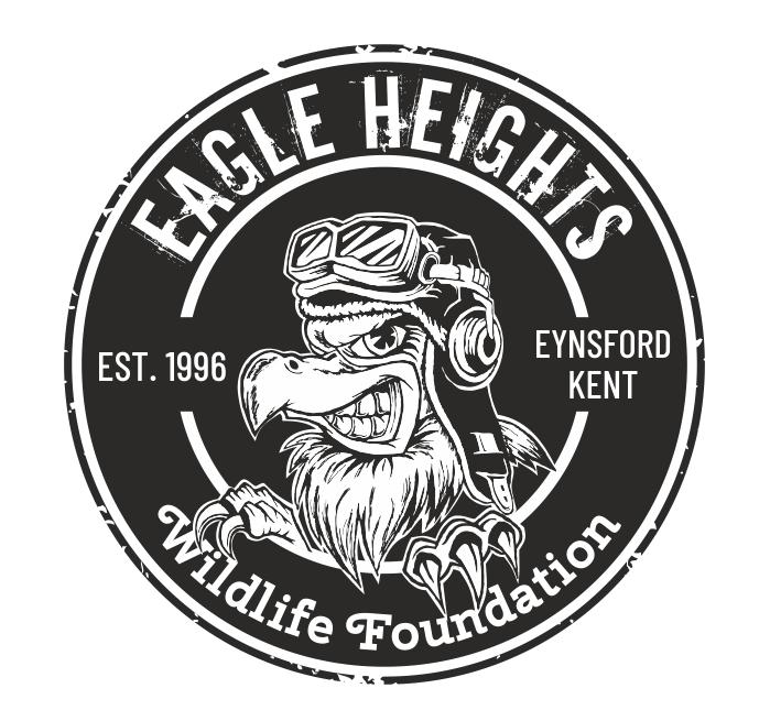 Black and White Eagle Logo Design by chameerakasundb for a Wildlife Foundation