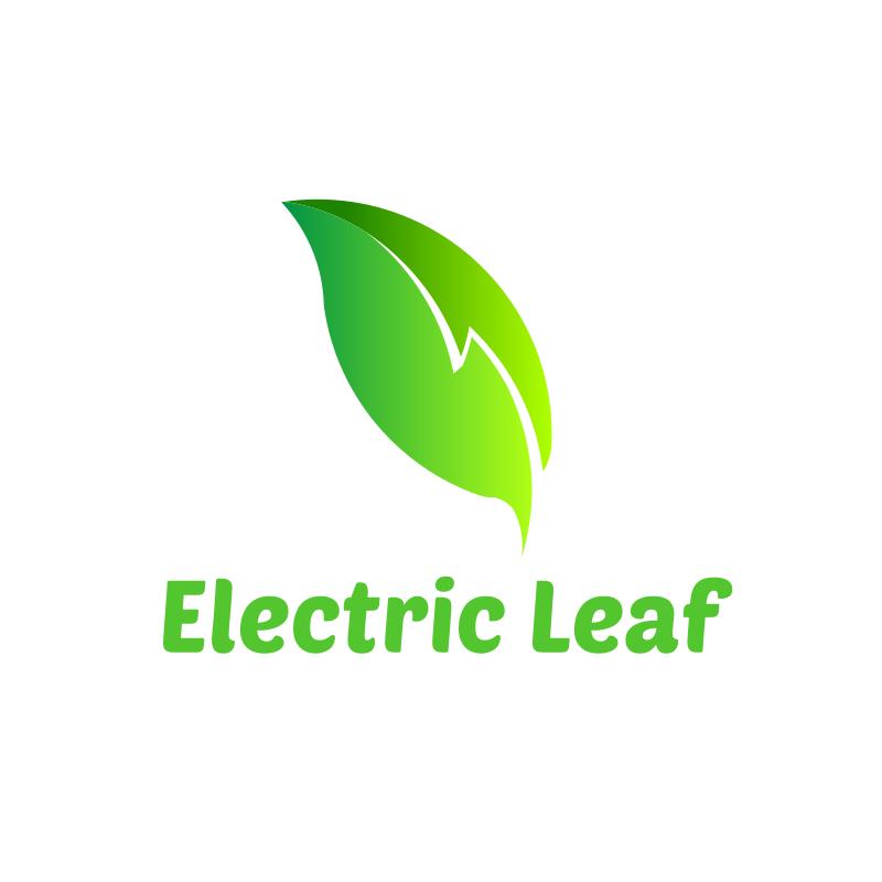 Lightning Leaf Logo Design