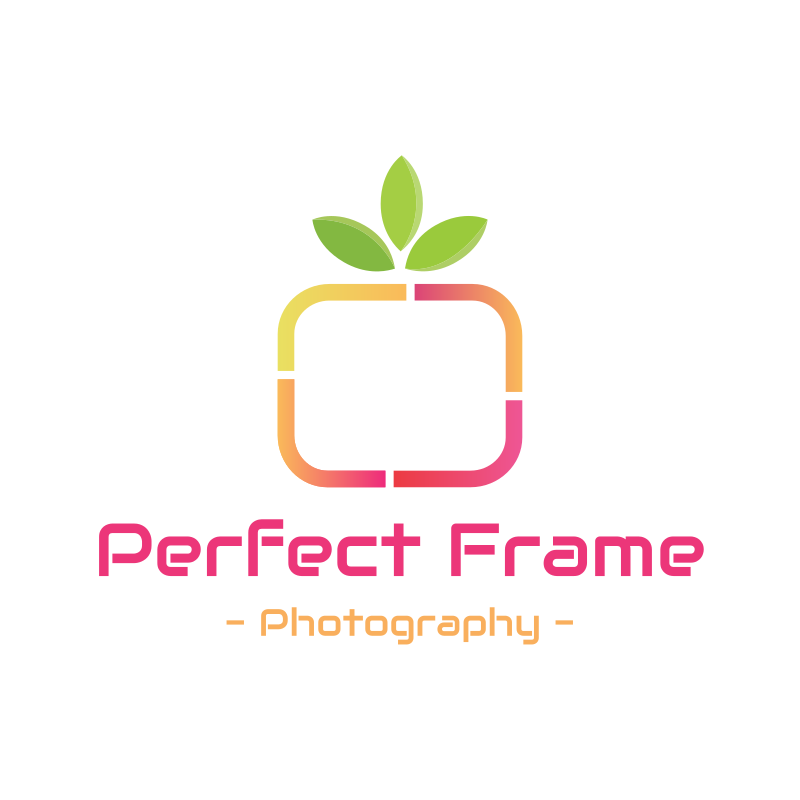 Perfect Frame Photography Logo Design