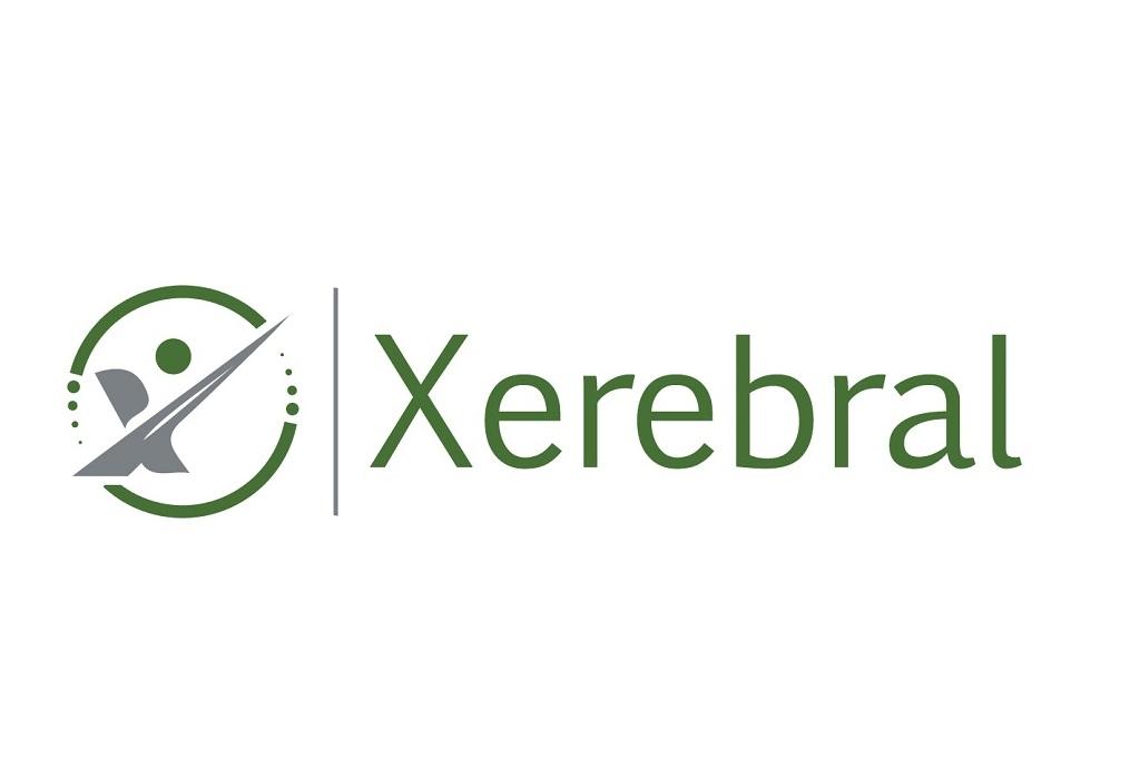 Xerebral Consulting Logo Design by Maxo-Biz